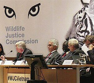 Independent panel confirms that immediate action by the Vietnamese government is required to shut down wildlife trafficking networks in Viet Nam