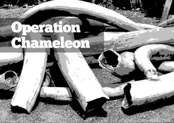 Operation Chameleon