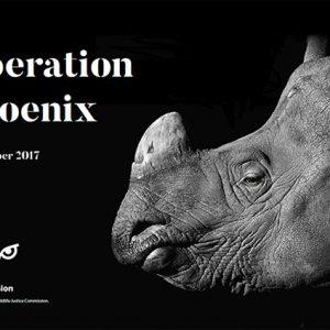 Key Findings: Operation Phoenix