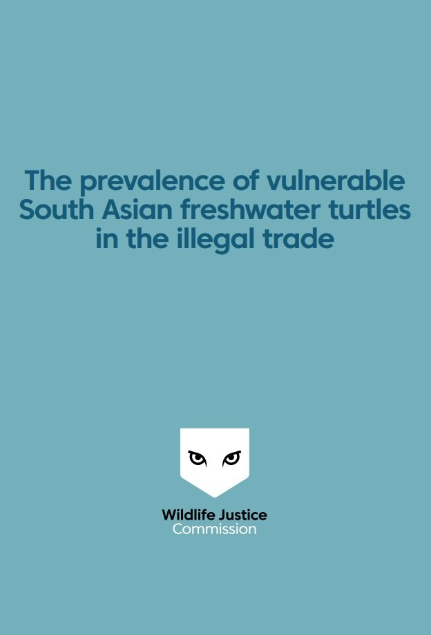 The prevalence of vulnerable South Asian freshwater turtles in the illegal trade