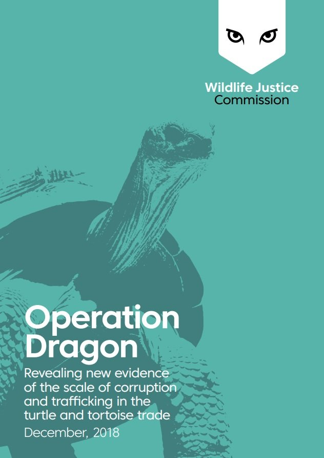 Operation Dragon - Revealing new evidence of the scale of corruption and trafficking in the turtle and tortoise trade