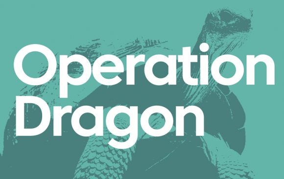 Operation Dragon: New evidence of the scale of corruption in the illegal turtle and tortoise trade in Southeast Asia