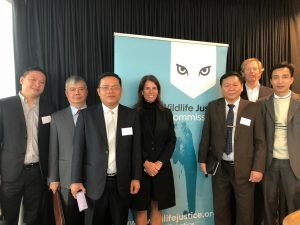 Wildlife Justice Commission Partners - Annual Meeting