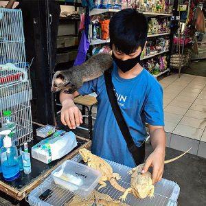 Kan blive værre end Wuhan: Læger kalder dyremarked i Bangkok for tikkende smittebombe