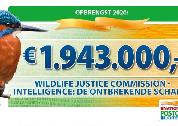 Dutch Postcode Lottery new grant to the Wildlife Justice Commission