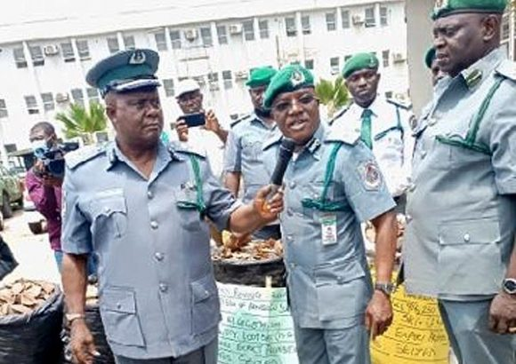 Again, Customs Seize N1.7bn Pangolin Scales In Lagos, Finger International Cartel